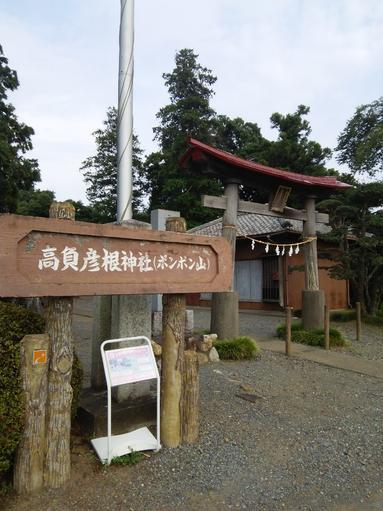 ぽんぽん山 (°д°)