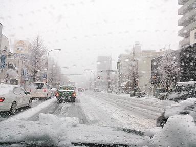 ★雪・・・・・雪・・・・雪★